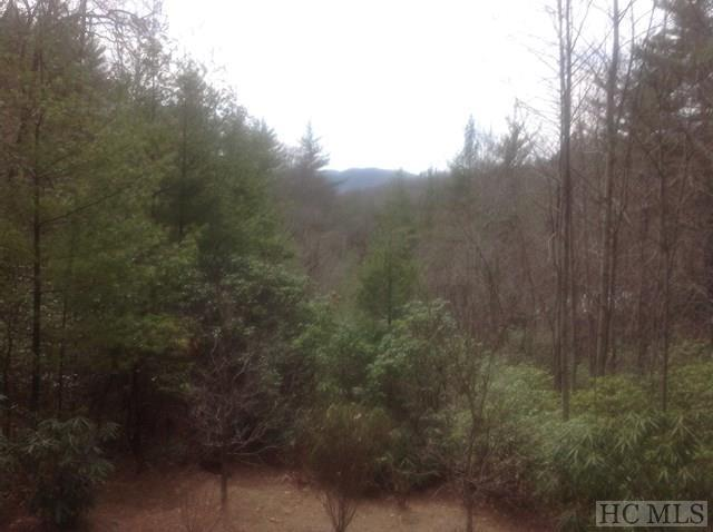 000 Tontogany Trail, Sapphire, NC 28774 (MLS #84927) :: Berkshire Hathaway HomeServices Meadows Mountain Realty