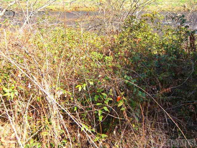 SR 1336 University Heights Road, Cullowhee, NC 28723 (MLS #85515) :: Lake Toxaway Realty Co