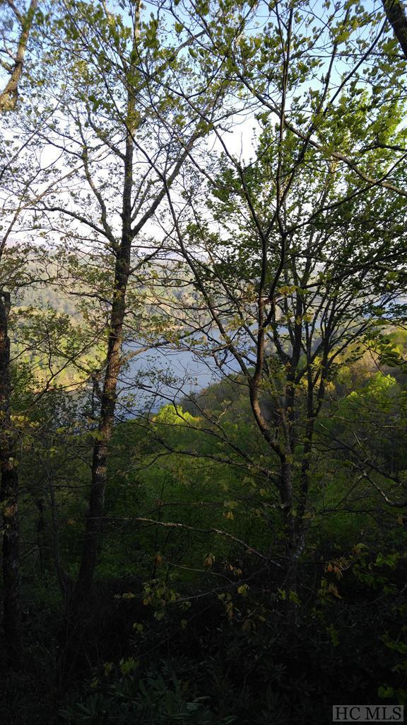 3 & 3E Bright Mountain Road, Cullowhee, NC 28723 (MLS #85984) :: Lake Toxaway Realty Co