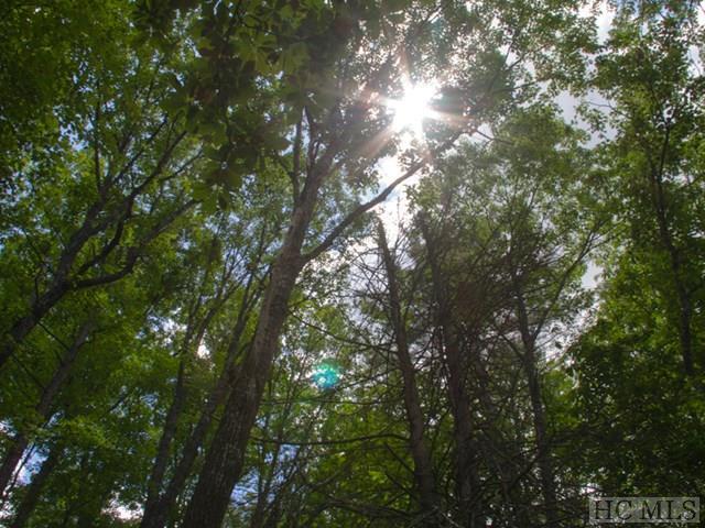 14 Captiva Mountain Drive, Cullowhee, NC 28723 (MLS #86156) :: Lake Toxaway Realty Co