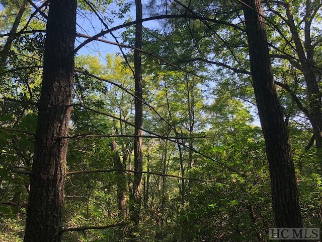 Lot 7 Chestnut Ridge Road, Highlands, NC 28741 (MLS #89263) :: Berkshire Hathaway HomeServices Meadows Mountain Realty