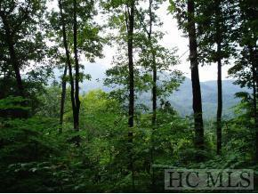 A4,B33 Twin Lakes Drive, Cashiers, NC 28717 (MLS #89428) :: Berkshire Hathaway HomeServices Meadows Mountain Realty
