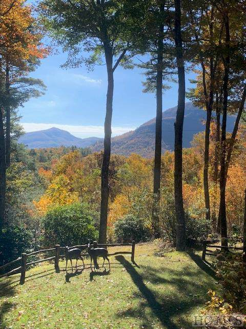 221 Azalea Lane, Cashiers, NC 28717 (MLS #90771) :: Berkshire Hathaway HomeServices Meadows Mountain Realty