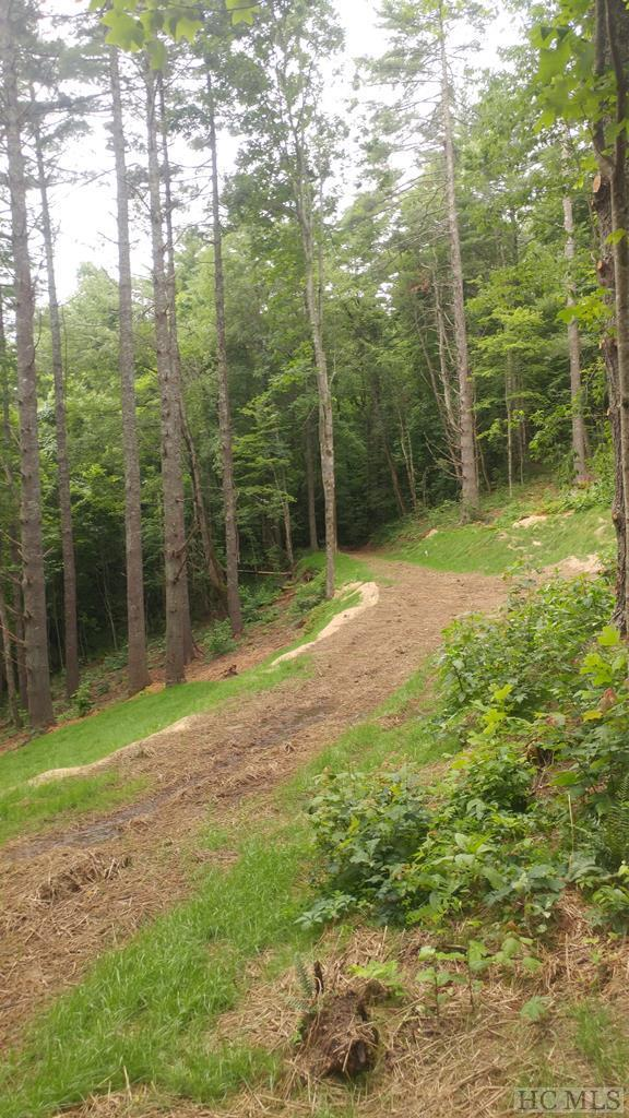 10 Lake Breeze Drive, Cullowhee, NC 28723 (MLS #91533) :: Berkshire Hathaway HomeServices Meadows Mountain Realty