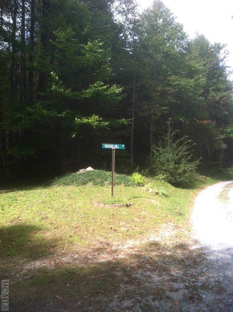 0 Moss Branch Road - Photo 1