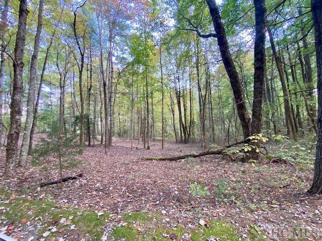 Lot 6 Forestland Rd., Cashiers, NC 28717 (MLS #93942) :: Berkshire Hathaway HomeServices Meadows Mountain Realty