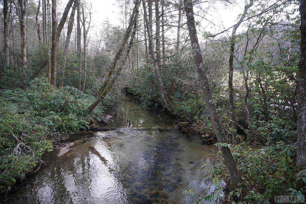 TBD Turtle Pond Road - Photo 1