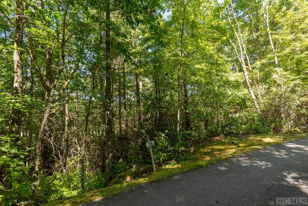 Lot 24 Wildberry Lane - Photo 1