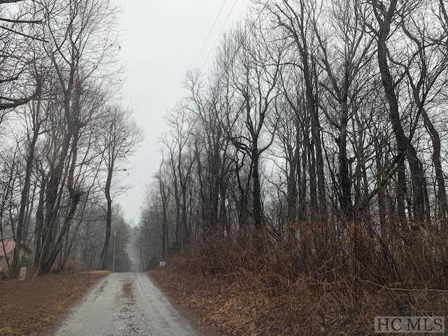 00 E Raven Ridge Road, Scaly Mountain, NC 28775 (MLS #95876) :: Pat Allen Realty Group