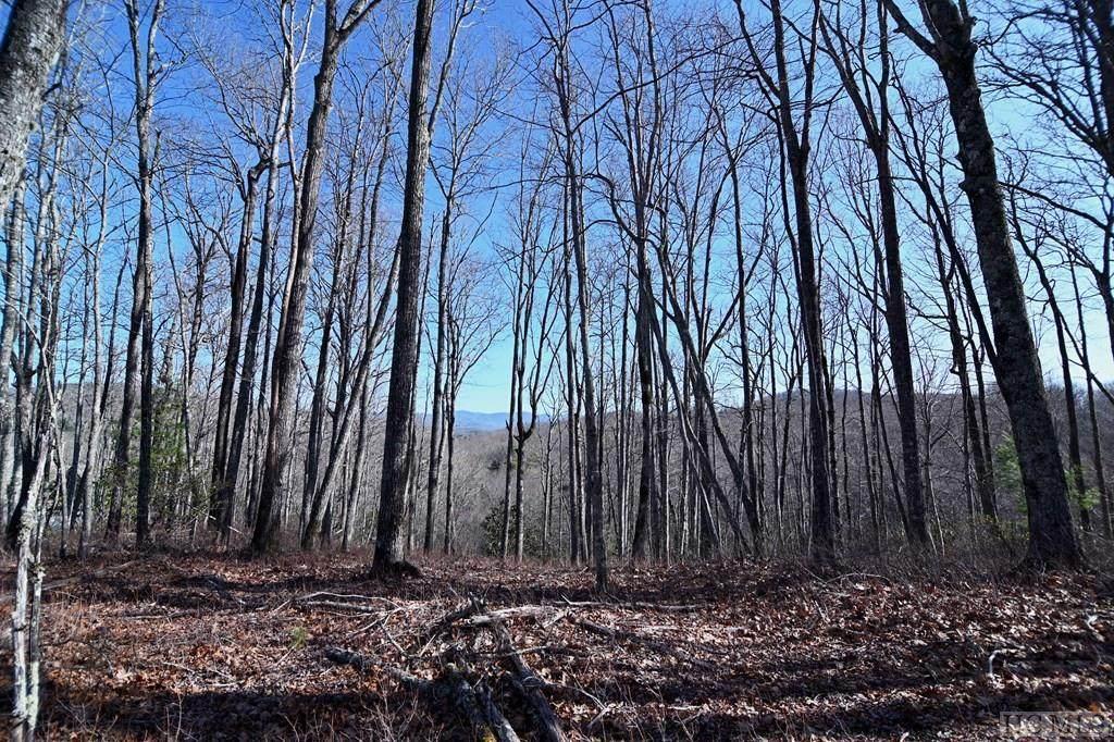 109 Crippled Oak Trail - Photo 1