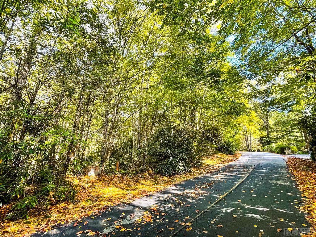 Lot 15 Holly Road - Photo 1