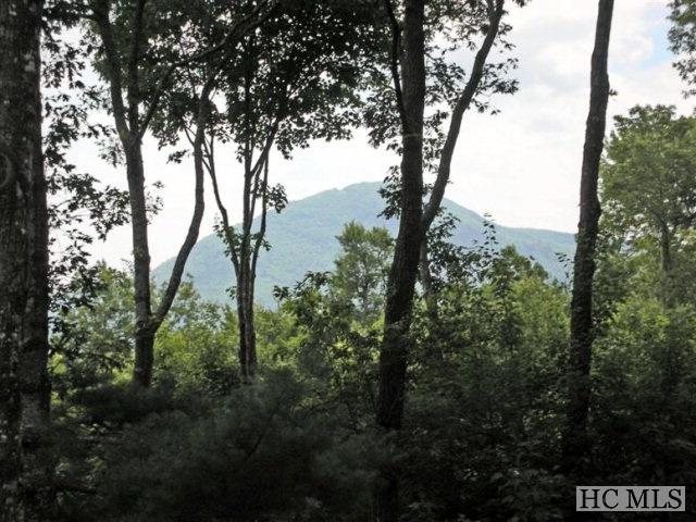 Lot 29 Lo Branchwater Trail, Glenville, NC 28736 (MLS #68552) :: Berkshire Hathaway HomeServices Meadows Mountain Realty