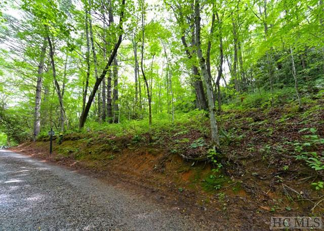 On Hidden Springs Road, Highlands, NC 28741 (MLS #72683) :: Berkshire Hathaway HomeServices Meadows Mountain Realty