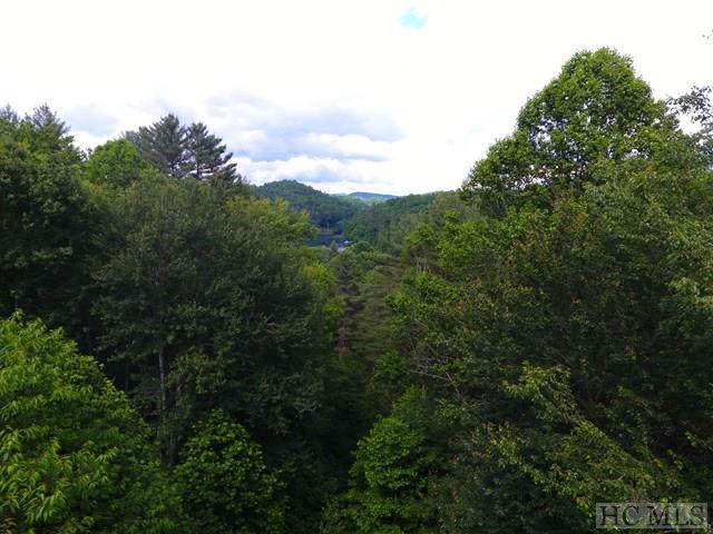 12 Caribou Mountain Road, Cullowhee, NC 28723 (MLS #83453) :: Berkshire Hathaway HomeServices Meadows Mountain Realty