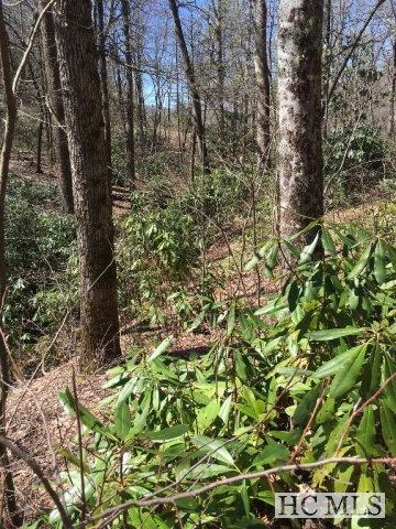 Lot 2 High Meadows Drive, Cashiers, NC 28717 (MLS #83485) :: Berkshire Hathaway HomeServices Meadows Mountain Realty
