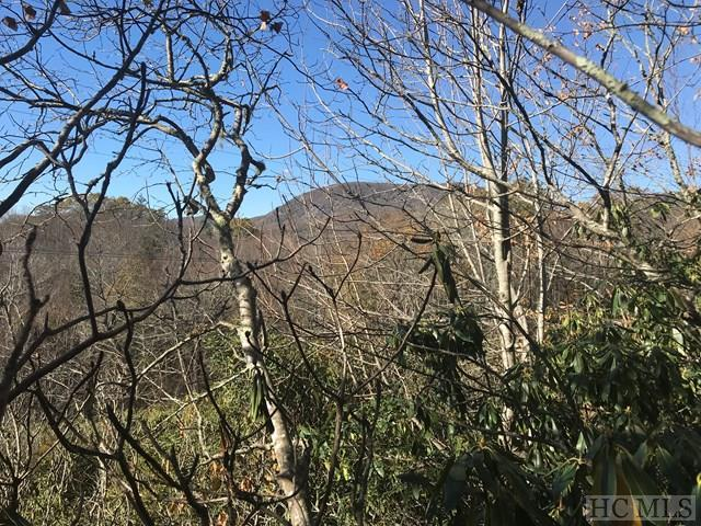 0 Fallen Leaf Lane, Highlands, NC 28741 (MLS #83710) :: Lake Toxaway Realty Co
