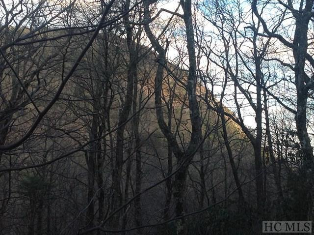 Lot 16 - Pineland Drive, Highlands, NC 28741 (MLS #84173) :: Lake Toxaway Realty Co