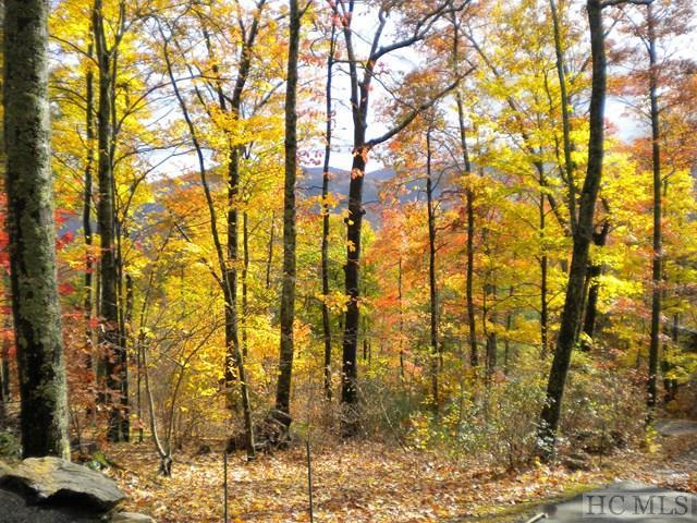 Lot 8 White Ash Lane, Sapphire, NC 28774 (MLS #87514) :: Berkshire Hathaway HomeServices Meadows Mountain Realty