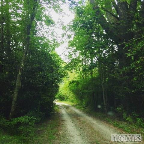 0 Dillard Road, Highlands, NC 28741 (MLS #87924) :: Lake Toxaway Realty Co
