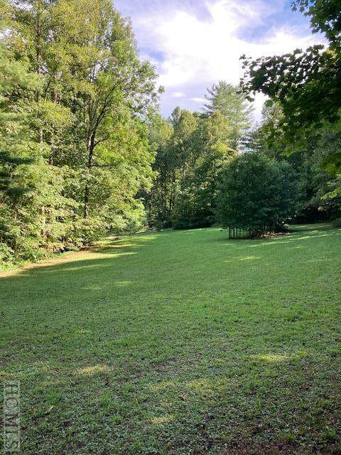 0 Moss Branch Road, Franklin, NC 28734 (MLS #91919) :: Berkshire Hathaway HomeServices Meadows Mountain Realty