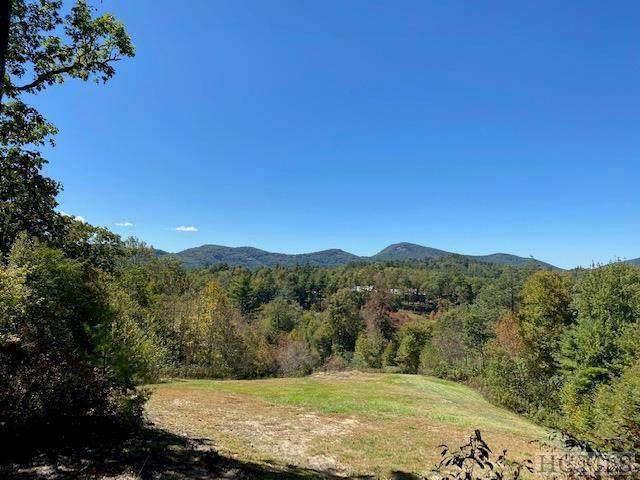 586 Mountain Meadow Lane - Photo 1