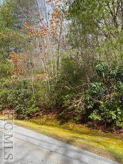 LT 71 Deer Run Drive, Highlands, NC 28741 (MLS #93176) :: Berkshire Hathaway HomeServices Meadows Mountain Realty