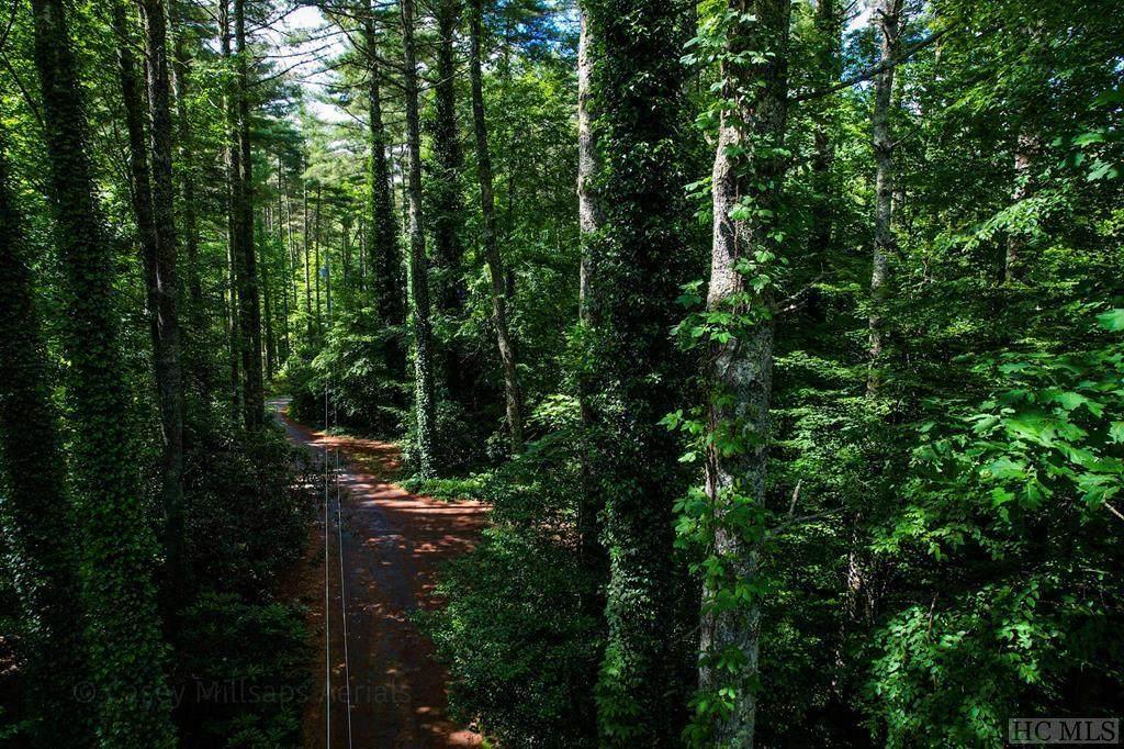 Lot 1 Hummingbird Trail - Photo 1