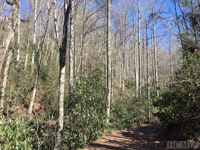 Lot 2 High Meadows Drive, Cashiers, NC 28717 (MLS #83485) :: Lake Toxaway Realty Co