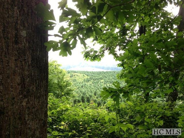end of Strawberry Branch Drive, Scaly Mountain, NC 28775 (MLS #61100) :: Berkshire Hathaway HomeServices Meadows Mountain Realty