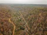 0000 Little Buffalo Road - Photo 12