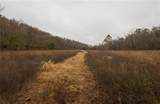 0000 Little Buffalo Road - Photo 23