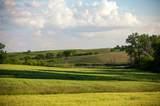 Opal Road - Photo 31