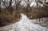 7607 Westridge Road - Photo 7