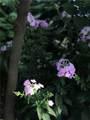 5554 Crestwood Drive - Photo 84