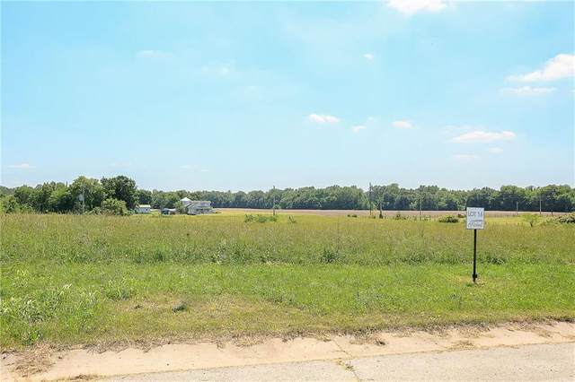 25217 NE 124th Terrace, Prathersville, MO 64024 (#2215977) :: Team Real Estate