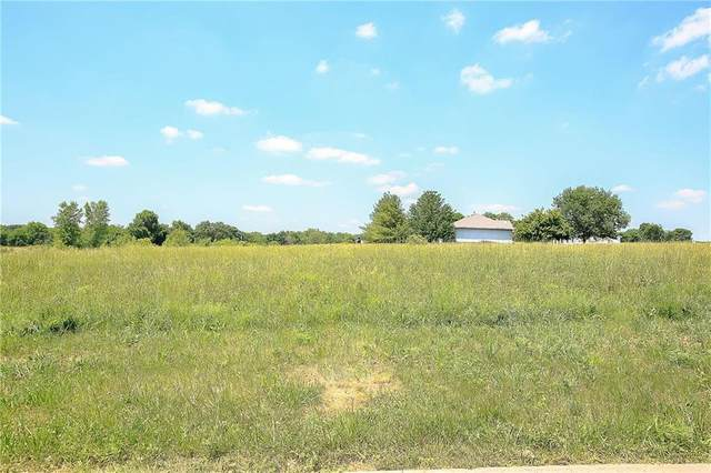 12411 Adam Street, Prathersville, MO 64024 (#2215980) :: Team Real Estate
