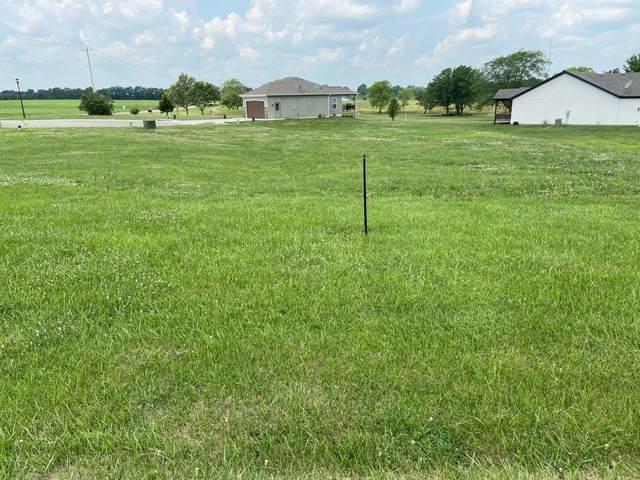 732 NE Hidden Valley Circle, Lawson, MO 64062 (#2229504) :: Ron Henderson & Associates
