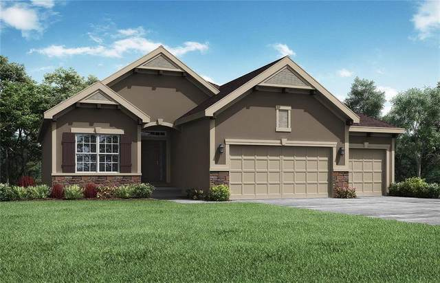7450 NW Chambers Court, Parkville, MO 64152 (#2254957) :: The Rucker Group