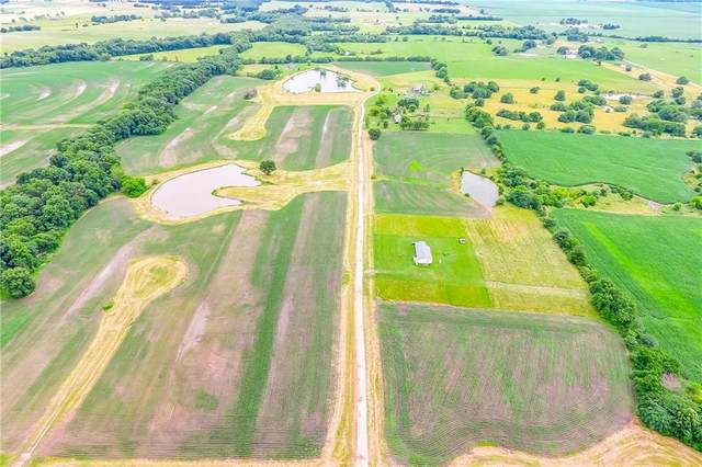 375Th-Lot #4 Road, Kingsville, MO 64061 (MLS #2258102) :: Stone & Story Real Estate Group