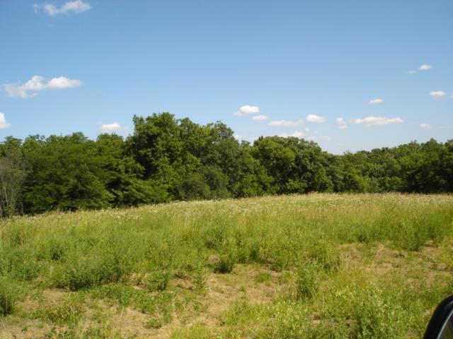 Lot 6 Stoneridge N/A, Savannah, MO 64485 (#112802) :: Edie Waters Network
