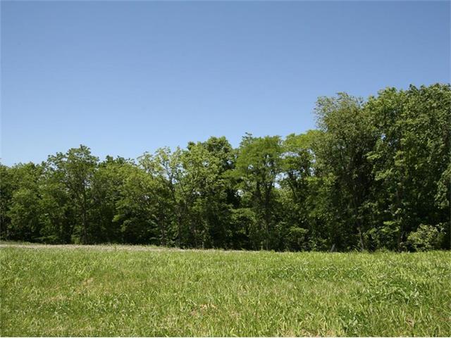6960 White Pine Circle, None/County, MO 64152 (#1436009) :: HergGroup Kansas City