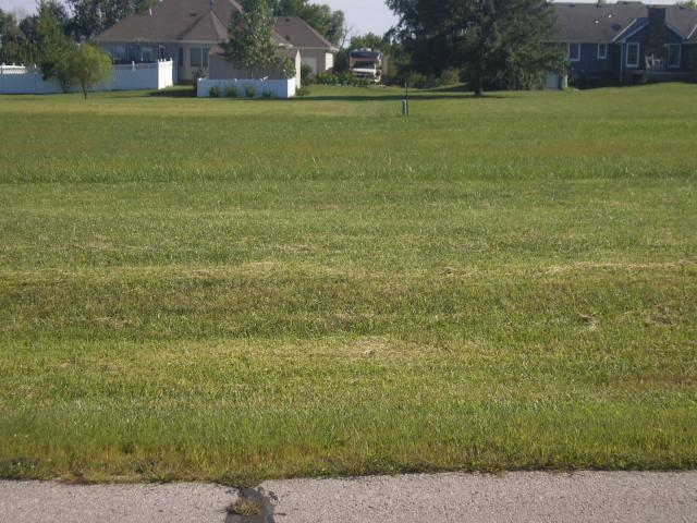Lot 56 244th Street, Cleveland, MO 64734 (#1904608) :: The Shannon Lyon Group - ReeceNichols