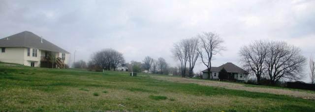 2407 Dry Creek Drive, Harrisonville, MO 64701 (#1932633) :: The Gunselman Team