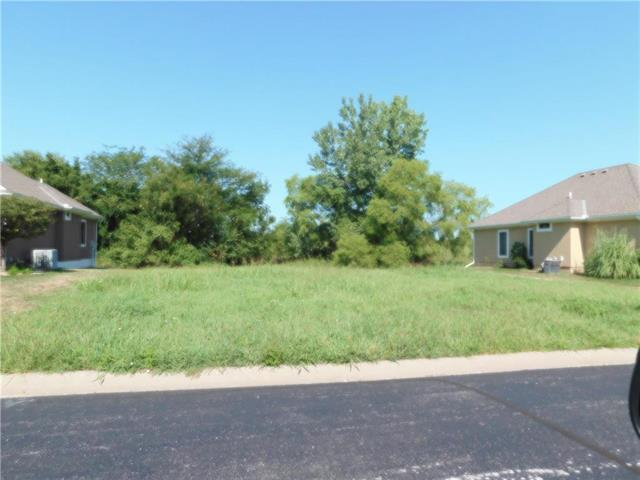 22508 Vincent Street, Peculiar, MO 64078 (#2029293) :: Kansas City Homes