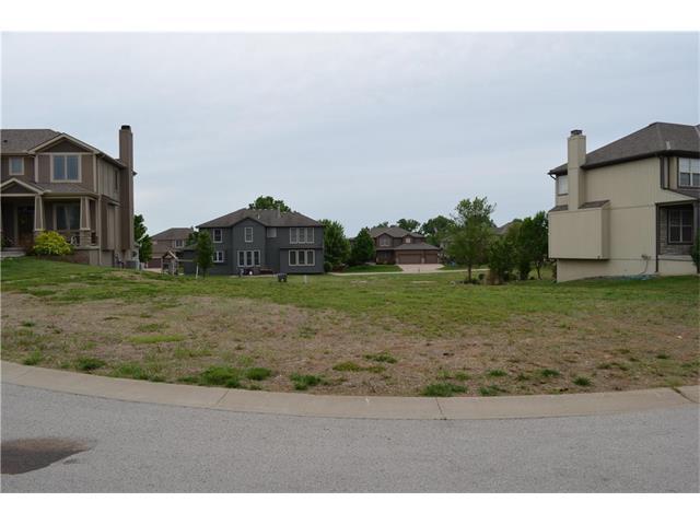 20201 W 223rd Terrace, Spring Hill, KS 66083 (#2046656) :: Edie Waters Network