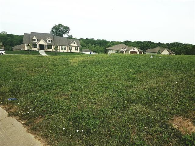 lot 28 SE Corey Nicole Place, Blue Springs, MO 64014 (#2046732) :: The Shannon Lyon Group - ReeceNichols