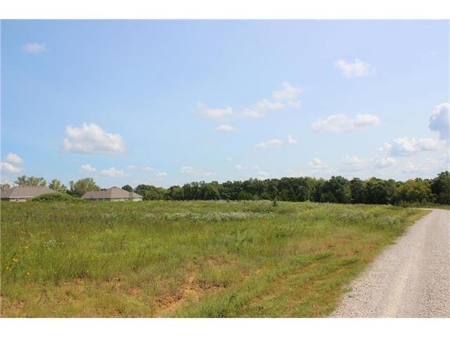 Lot 39 Indian Point Road, Warrensburg, MO 64093 (#2066748) :: Edie Waters Network