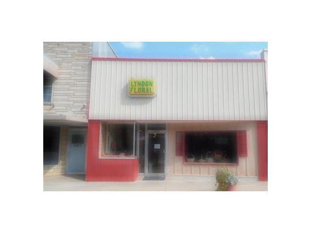 623 Topeka Avenue, Lyndon, KS 66451 (#2073455) :: Carrington Real Estate Services