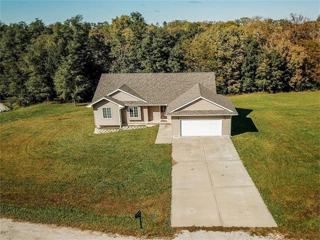 9350 Alpha Ridge Road, Trimble, MO 64492 (#2073856) :: Edie Waters Team