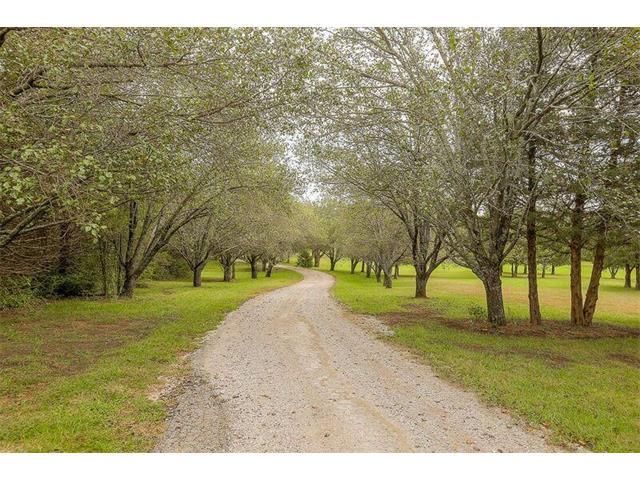 12220 Hedge Ln Terrace, Olathe, KS 66061 (#2074135) :: Edie Waters Team